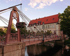 Uppsalas museer