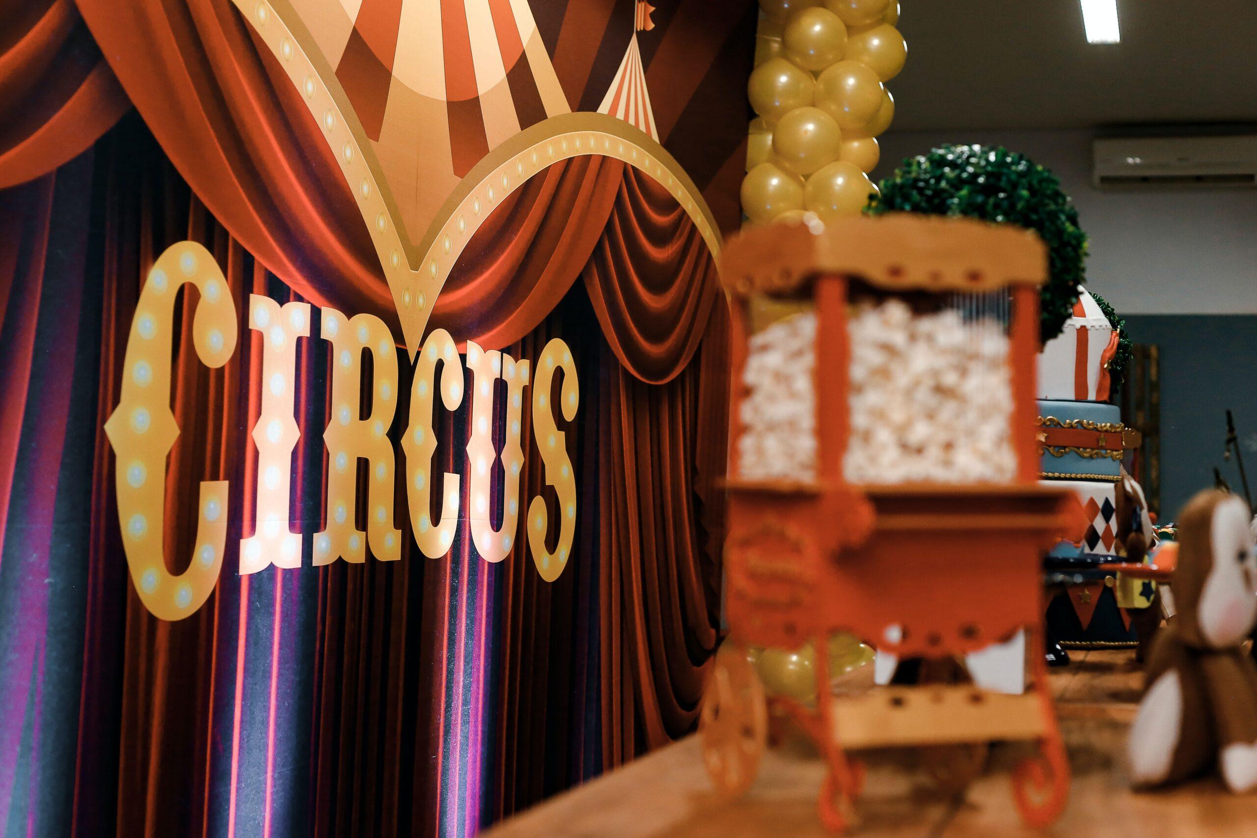 Cirkusskola 4-6 år   Brantingskolan