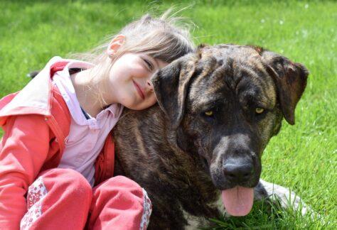 Hundkurs - Barn med hund | Medborgarskolan i Enköping