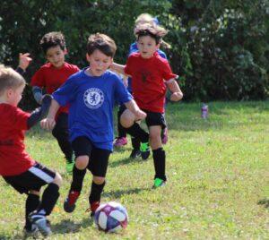 Fotbollsläger 6-12 år v. 23-24 | Vaksala SK